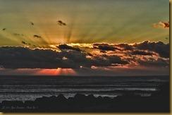 - Sunrise Gooseberry D7K_6439 October 21, 2011 NIKON D7000