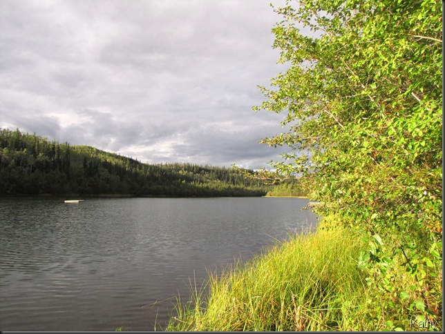 the lake in afternoon sunshine