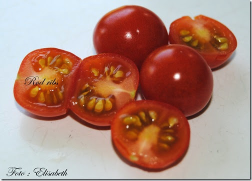 Tomat 2014, Rød ribs 019
