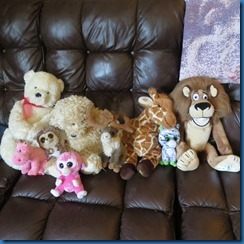 Stuffed animals for sale or rent.