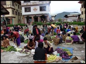 India Bhutan Paro Thimpu (94)