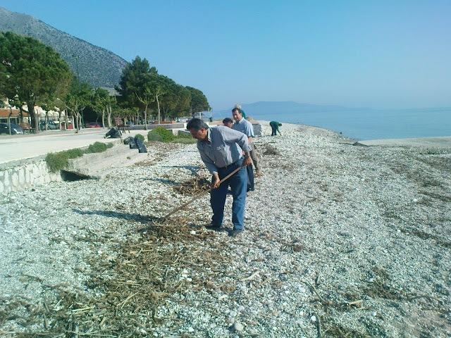 Την Κυριακή καθαρίζουμε την παραλία του Πόρου (13-5-2012)