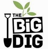 BigDig1