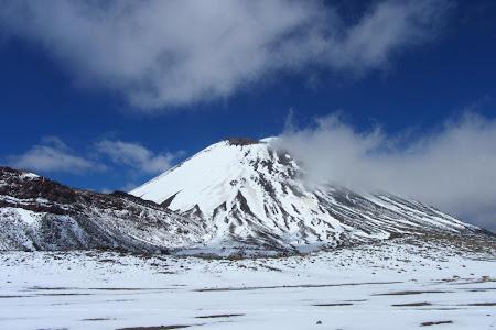 Tongariro NP - South Crater - cu Ngaruhoe in zare