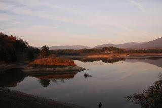 日野川ダムよりダム湖側の堤体を望む