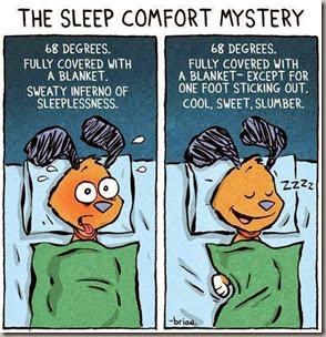 sleep mystery