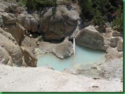 Norris Geyser Basin (71)