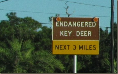 key deer road sign