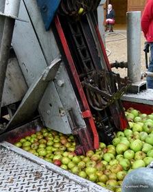 pommes 002