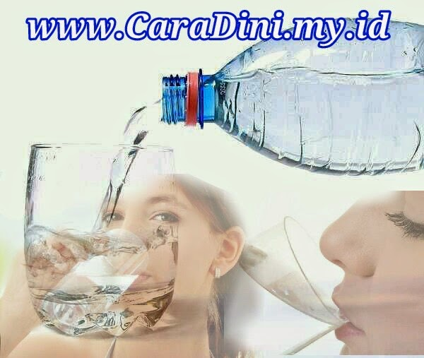mengkonsumsi air putih
