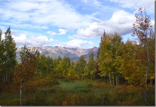 Mountains and Aspen