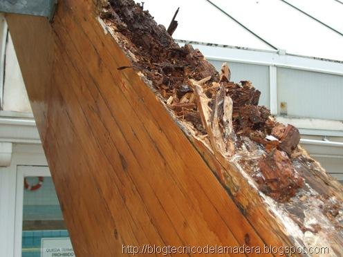 reparacion madera (3)