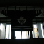 toronto maple leafs downtown toronto in Toronto, Ontario, Canada