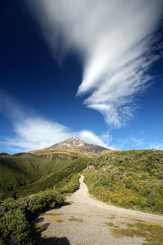 Taranaki Trail Begins-001
