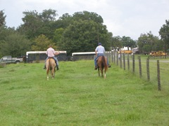 farm 2012 171