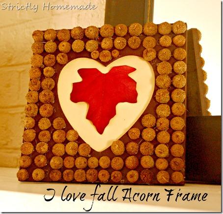 Acorn Fall Frame