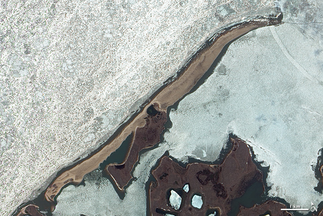 Satellite image of a barrier island facing the Beaufort Sea, on the northern edge of Canada's Northwest Territories. The image was acquired on 23 June 2004, before sea ice had melted or retreated in the summer thaw. The beach is tan and brown in the image, surrounded by ice in the ocean and the back bay. In the large image, the area behind the shoreline is pockmarked by marshes, ponds, and hummocks characteristic of 'thermokarst', landscapes created by the melting and refreezing of permafrost. Photo: Jesse Allen and Robert Simmon / NASA