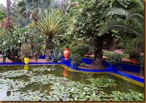 Marrakech majorelle pool