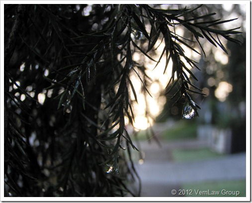 RainsPressOLYMPUSAPRIL11052