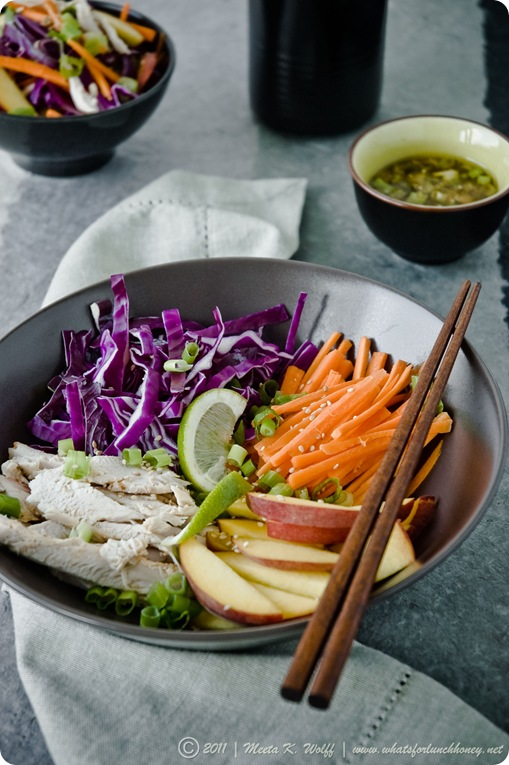 Asian Chicken Red Cabbage and Peach Salad (0006) by Meeta K. Wolff