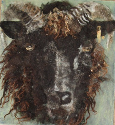 rams head jill harrison
