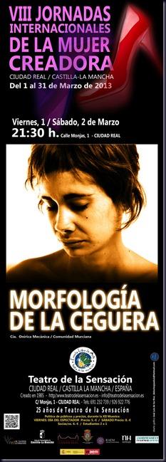 MORFOLOGIA WEB