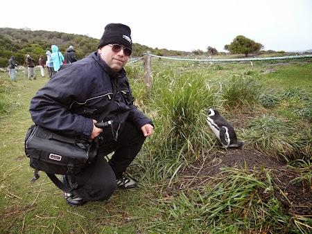 Tara de Foc: Cu un pinguin