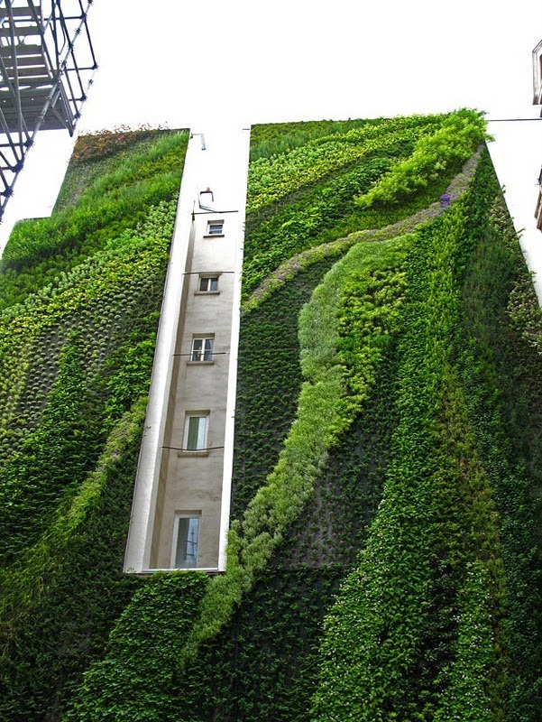 vertical garden by patrick blanc