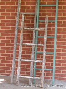 8-13 ladders