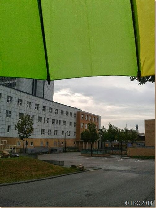 regnvejrsmorgen