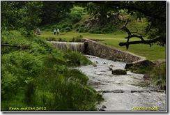 Bradgate Park D300s  08-07-2012 12-40-15