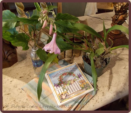 05-18-fabric-book-plants
