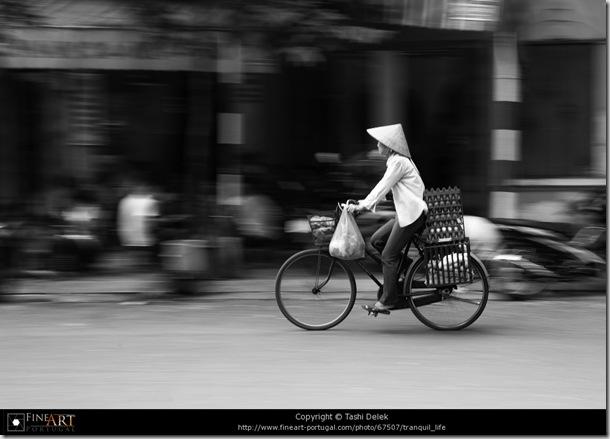 Tranquil Life © Tashi Delek