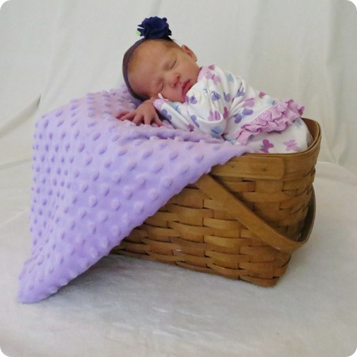 Liberty's Newborn Portraits