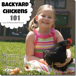 backyard chickens button