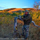 A bowhunter tries to convince bull elk to join him on an early October morning in Montana&#039;s Castle Mountains.