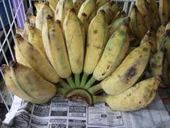 pisang awak