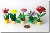 fiori quilling