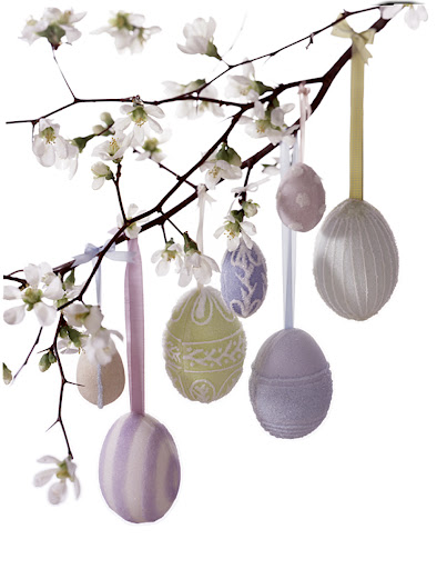 Sugar eggs made into ornaments and hung from a quince branch with ribbons.