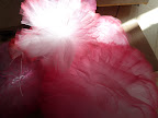 I loved the way the light shined on the tulle poms.