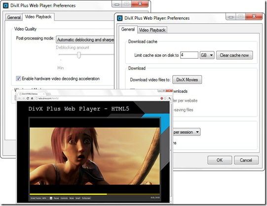 DivX_Web_Player-plugin