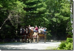 Carriage tour group