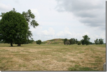 Cahokia Mounds 8