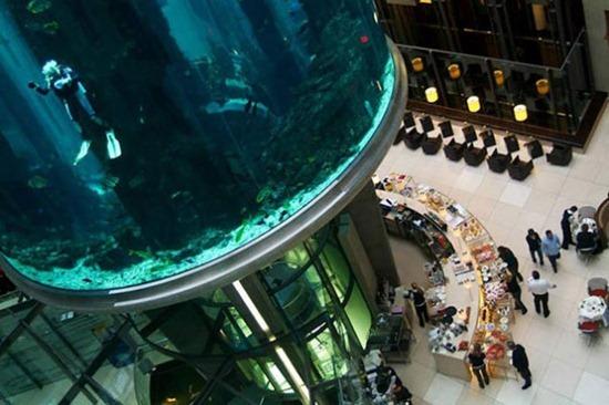 Cylindrical Aquarium 05