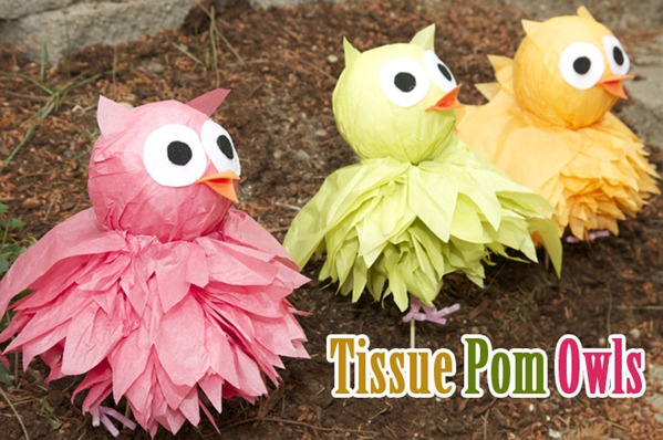 tissue pom owls tutorial