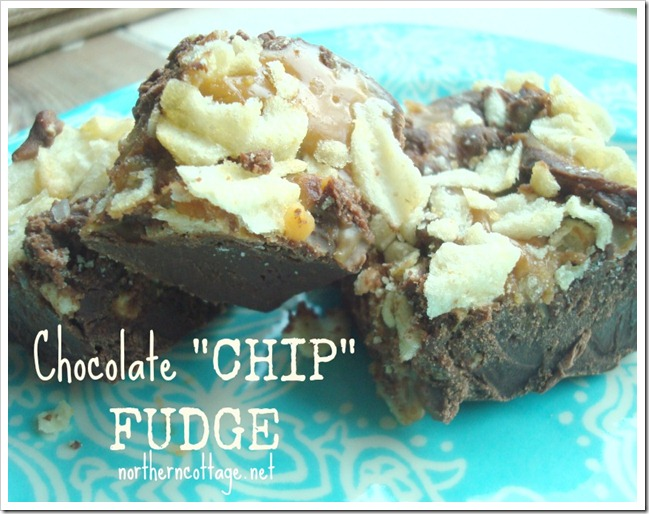 Chocolate Chip Fudge @ Northern Cottage.net