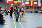 20130511-BMCN-Bullmastiff-Championship-Clubmatch-1564.jpg