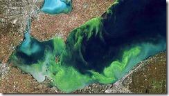 Lake Erie blue-green-algae