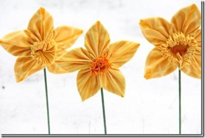 daffodil-23_thumb