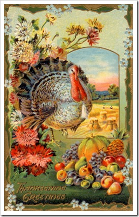thanksgiving card mlw